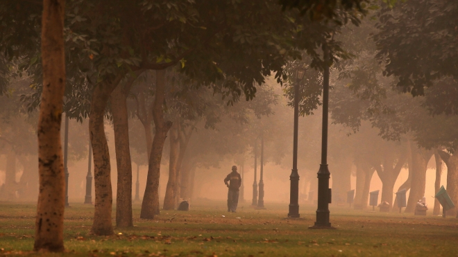 A man walks in a public park on a smoggy morning in New Delhi