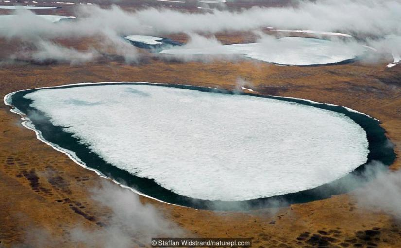 There are diseases hidden in ice, and they are wakingup