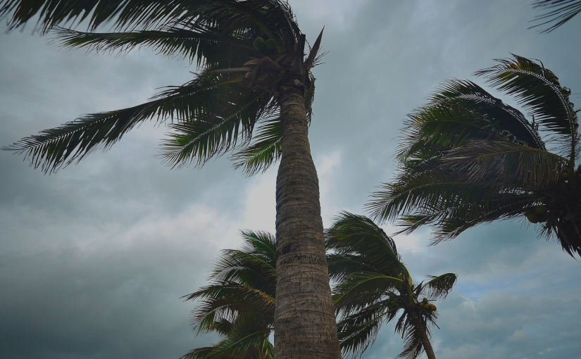 Risk of Gulf of Mexico tropical system increases