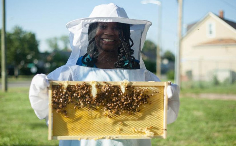 Detroit's urban beekeepers are transforming the city's vacantlots
