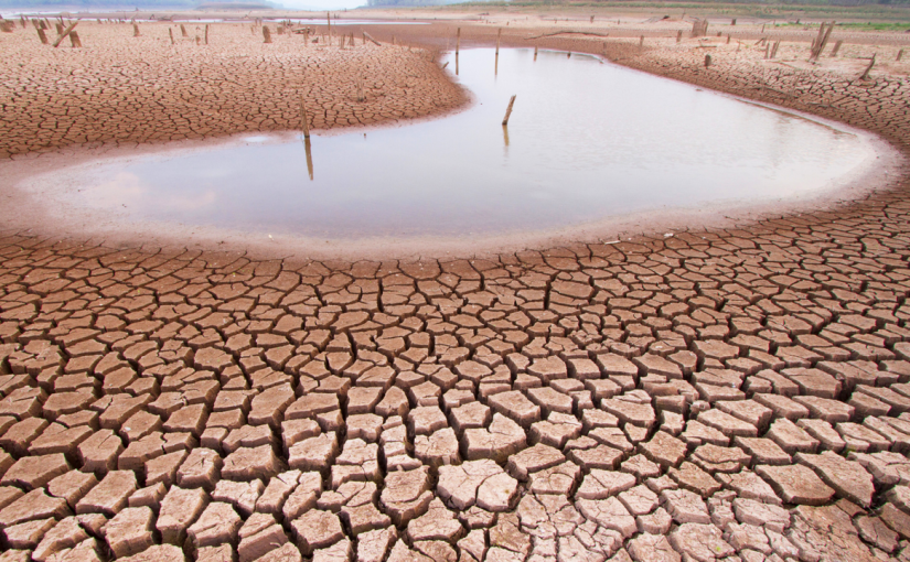 Powerful new weapon in the fight against climatechange