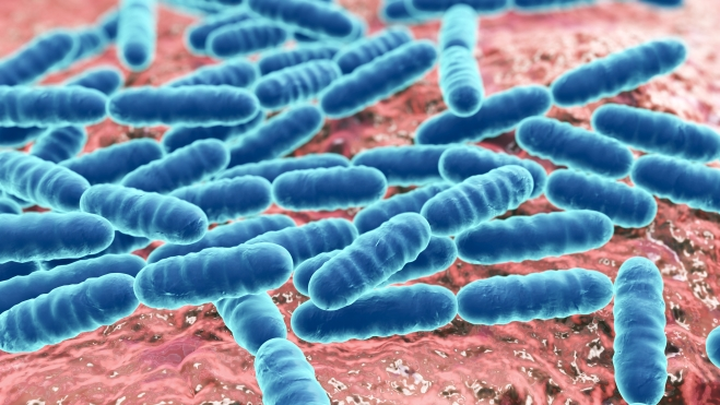 Links between antibiotic use and resistance