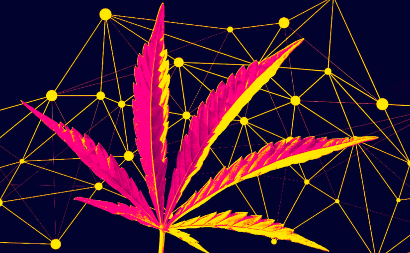 How cannabis is firing up the U.S. supplychain