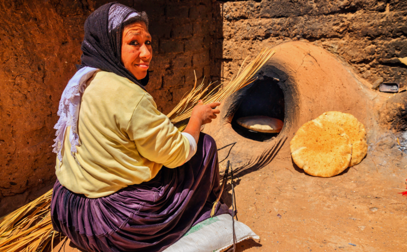 New standard in the cookstoves series justpublished