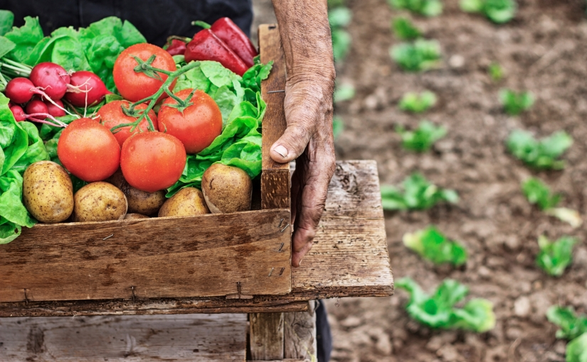 Key new (and not so new) Food Safety challenges for2018