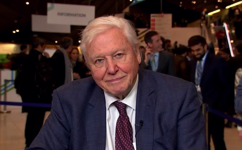 David Attenborough: 'The collapse of our civilizations is on thehorizon'
