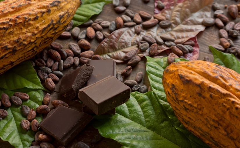 First International Standards for sustainable and traceable cocoa just published
